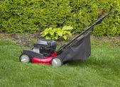在草围场剪草机 — 图库照片