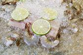 Closeup of fresh seafood on ice — Stock Photo