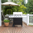 Stock Photo: Large barbecue cooker on cedar deck