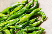 Freshly picked Sweet Green Peppers — Stock Photo