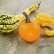 Pumpkin with Decorative Squash  — Stock Photo