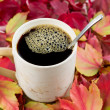 Stock Photo: Black Coffee in Fall Time