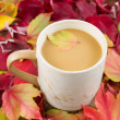 Seasonal Fall Coffee — Foto de Stock