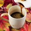 Pouring Fresh Coffee During Fall Time — Stock Photo