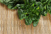 Healthy Choy Ready for Cooking — Stock Photo