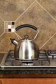 Stainless Steel Tea Pot on Range  — Stock Photo