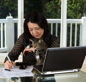 Mature woman and her pet cat working at home — Stock Photo