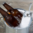 Beer on Ice for the Season — Stock Photo #49529733