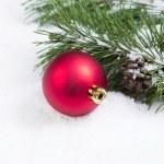 Single Red Christmas Ornament with Seasonal Fir Branch — Stock Photo #50182337