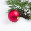 Single Red Christmas Ornament with Seasonal Fir Branch — Stock Photo #50182337