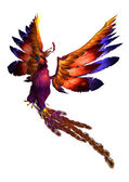 Vol phoenix — Photo