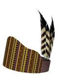 Coiffe de plumes amérindiennes — Photo