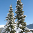 Winter in St Moritz — Stock Photo #38303657