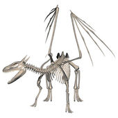 Dragon Skeleton — Foto Stock