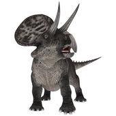 Dinosauro zuniceratops — Foto Stock