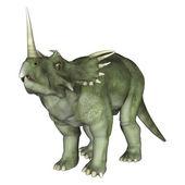 Dinosaur Styracosaurus  — Stock Photo