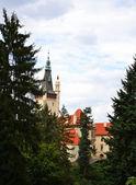 Palais de Pruhonice, République tchèque — Photo
