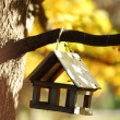 Birdhouse in the autumn forest - Foto de Stock