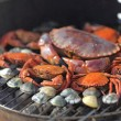 Crabs shrimps on charcoal grill — Stock Photo #12187173