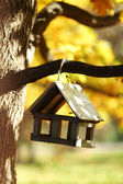 Birdhouse in the autumn forest — Stockfoto