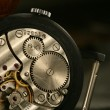 Clock gear macro — Stock Photo