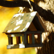 Foto Stock: birdhouse in the autumn forest