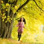 Autumn woman — Stock Photo #12315210