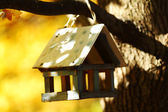 Birdhouse in the autumn forest — Fotografia Stock