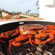 Stock Photo: Crab on charcoal grill