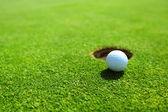Pelota de golf en el borde de la taza — Foto de Stock