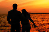 Sunset love — Стоковое фото