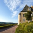 Landscaped gardens marqueyssac france — Stock Photo
