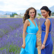 Two women on lavender field - ストック写真