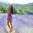 Stock Photo: Woman standing on a lavender field