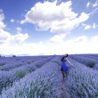 Woman on lavender field — Stock Photo #12521467