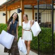 Two woman shopping — Stock Photo #12521569