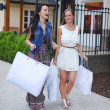 Two woman shopping - Stockfoto