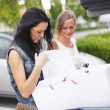 Two woman after shopping — Stock Photo #12879771