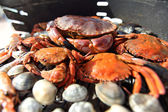 Crabs shrimps on charcoal grill — Stock Photo