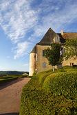 Landscaped gardens marqueyssac france — Stock Photo