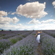 Woman on lavender field - Foto de Stock