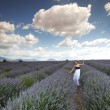 Woman on lavender field - Foto Stock