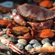 Crabs shrimps on charcoal grill — Stock Photo #13159646