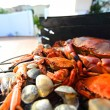 Crabs shrimps on charcoal grill — Stock Photo #14128880