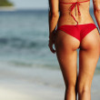 Sexy woman back on sea background — Stock Photo #15847919