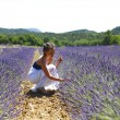 Stock Photo: Woman sitting on a lavender field