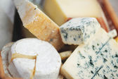 Various types of cheese composition — Stockfoto