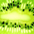 Kiwi slice — Stock Photo