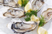 Oysters with lemon and dill — Stock Photo