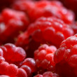 Framboise — Photo #23695373
